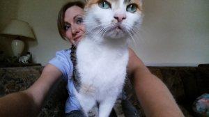 pet sitting whitburn whiskers