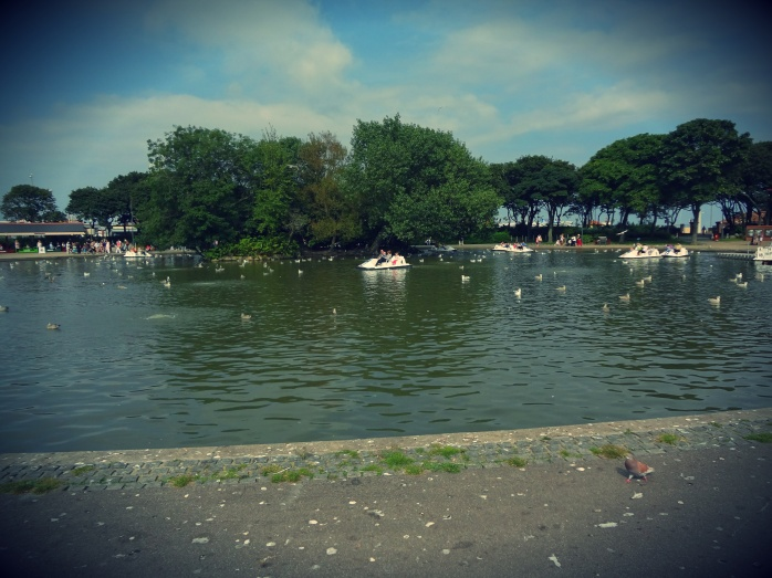 Paddle Boat Lake