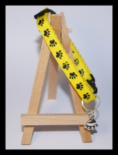 Yellow safety cat collar