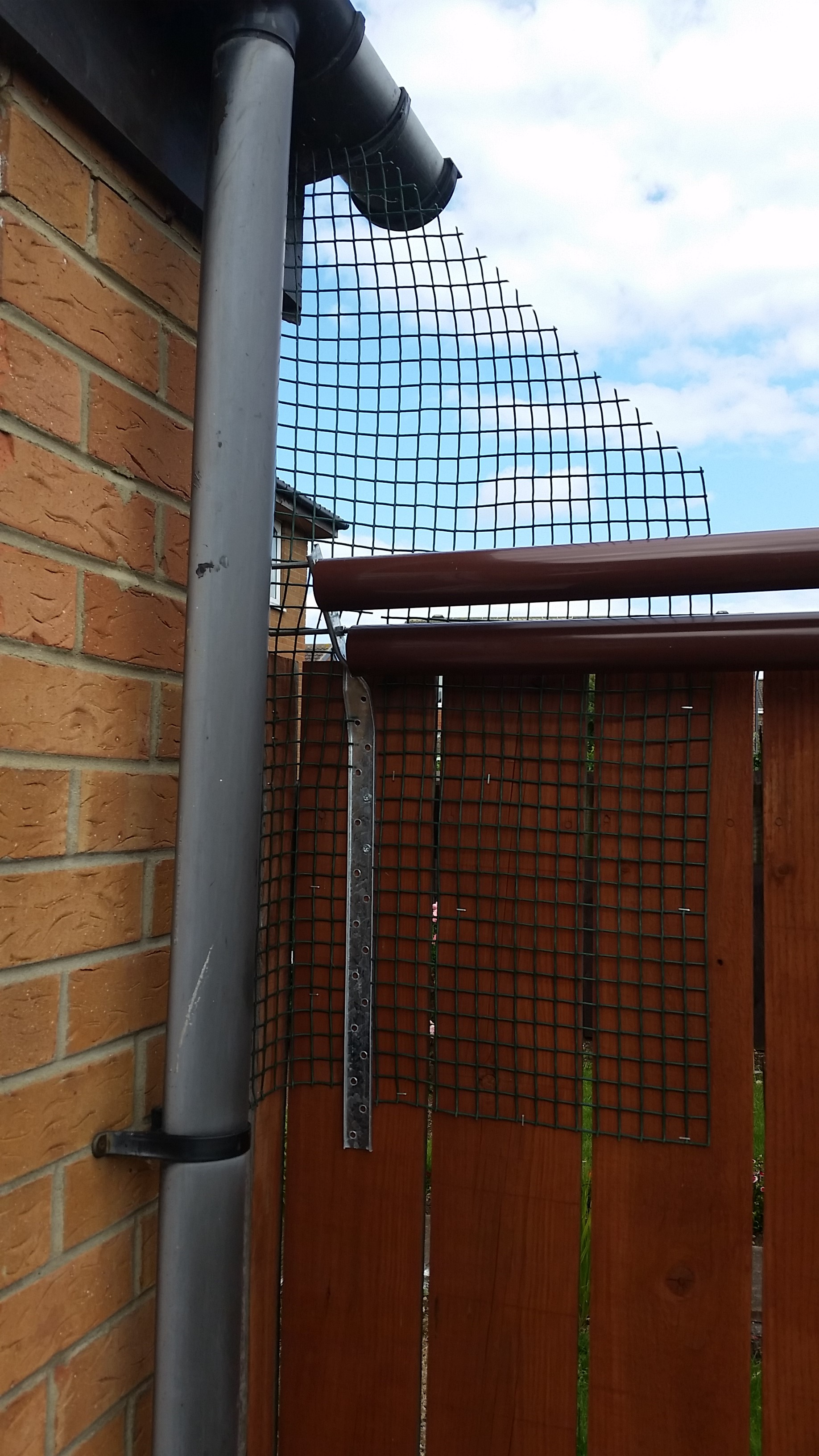 Homemade Catio Outdoor Cat Enclosure Whitburn Whiskers