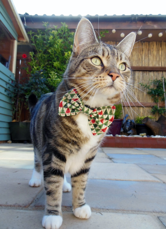 Christmas Tree Cat Bow Tie Collar